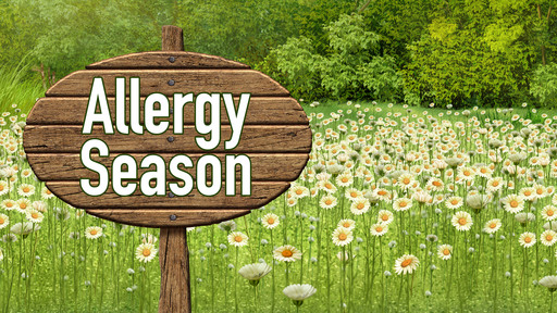 Note from the School Nurses: Allergies