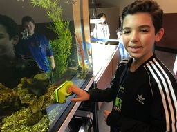 CMS students volunteer to maintain new aquaponics system