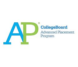 More than 120 named AP Scholars